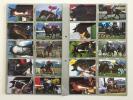 中央競馬PRC 名馬Foreverシリーズ(Part 2)52枚