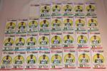 タカラ プロ野球ゲーム 選手カード 57年度 南海ホークス29枚