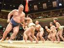 送料無料☆NHK福祉大相撲 2月11日 タマリ席 2枚連番 向正面ペア