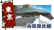 大相撲一月場所 1/22 千秋楽2階イスC席 ペア(2枚)セブン発券