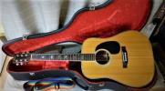 Aria フォークギター W-400 (ハカランダ)PU付き