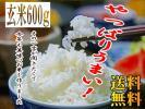 ≪送料無料≫秋田県産 100% 新米 あきたこまち 玄米600g(4合)