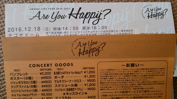 嵐 are you happy 12/18 1枚 アリーナE 名古屋 ナゴヤドーム