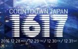 カウントダウンジャパンCOUNTDOWN JAPAN 30日 1日券2枚ペア?