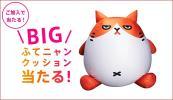 当選品 ふてニャン BIGクッション 未開封新品 桐谷美玲 ピコ太郎
