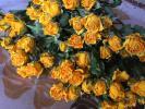ドライフラワー スプレーバラ 黄色20本