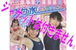 泉明日香&佐々木舞 スク水コレクション4◆ DVD ◆アイマックス