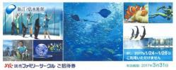 即決翌日出荷! 送料無料 新江ノ島水族館 無料招待券 1〜9枚