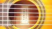 ヤマハ No.100 松、楓単板、しっかりした音です。弦高調整済み