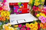東芝 dynabook T552/47GWD◆win10/Core i 5/Bluray/8GB/新品SSD