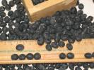 ◇無農薬=安心安全◇大きく濃厚美味な「丹波黒豆」 100g◇