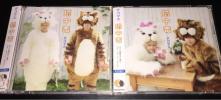 テゴマス 猫中毒 CD DVD 初回限定盤 A B 2枚セットNEWS 手越祐也