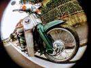 動画有ホンダスーパーカブ50カスタム検モンキーゴリラエイプAPEダックスDAXシャリーマグナ50ジャズ50JAZZ4MINI原付バイク50cc中古車体