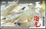 お刺身用 天使海老 20/30 サイズ 1㎏ 冷凍