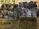 ガンガン焼き 牡蠣  ロブスター セット 宮島牡蠣 広島
