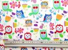 92cm【TimelessTreasures】カラフル・ふくろう owl USAコットン生地