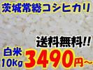 【新米】産地直送◆28年茨城常総産コシヒカリ白米10kg◆送料無料