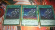 遊戯王 同胞の絆 MB01-JP002 3枚セット