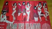 AKB48渡辺麻友 島崎遥香 大島優子 縦190cm 横135cm