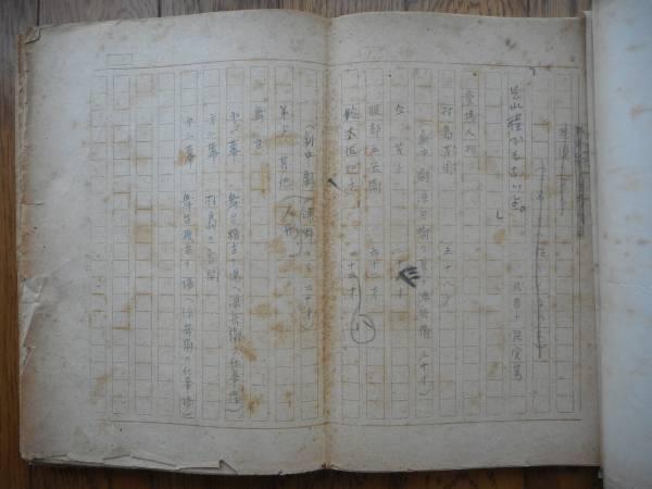 昭和20年 武者小路実篤肉筆原稿「それ程でもないよ」全101枚完
