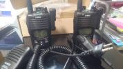 デジタル簡易無線 アルインコDJ-DPS50【2台セット】