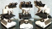 オリンパス生物顕微鏡CH-2型・メンテ済/良く見え