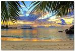 海 ビーチ ハワイ 大 ポスター ヤシの木 夕日 サンセット 南国
