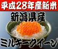 【平成28年産新米】極上米!新潟県産ミルキークイーン玄米30kg