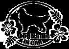 犬 ワンちゃん DOG IN CAR ゴールデンレトリバー カーステッカー