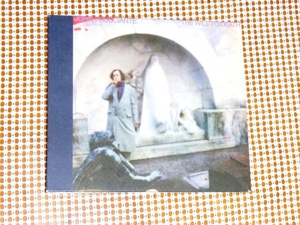 廃盤 John Frusciante ジョン フルシアンテ The Will To Death / Josh Klinghoffer ( red hot chili peppers )共作 優しく温もりある名作
