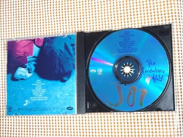 廃盤 Joi ジョイ The Pendulum Vibe /ドラマ LUKE CAGE 出演 Raphael Saadiq の Lucy Pearl に参加 NEO SOUL 才人 Dallas Austin 製作良作