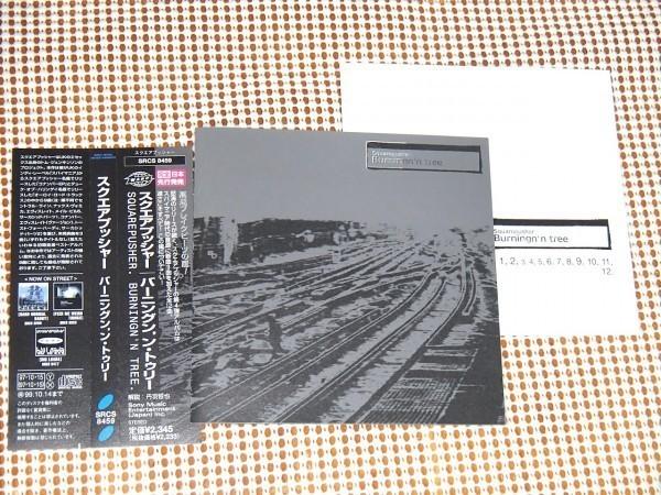 廃盤 Squarepusher スクエアプッシャー Burningn'n Tree / Warp / Duke Of Harringay 名義の Alroy Road Tracks からの曲を含む良コンピ