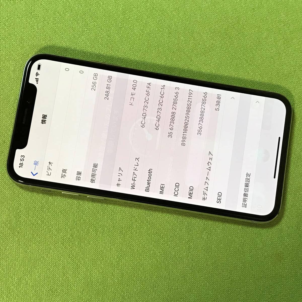 SIMフリー iPhone X シルバー 256GB MQC22J/A docomo 格安SIM MVNO 海外利用可能 アクティベーションロック解除済