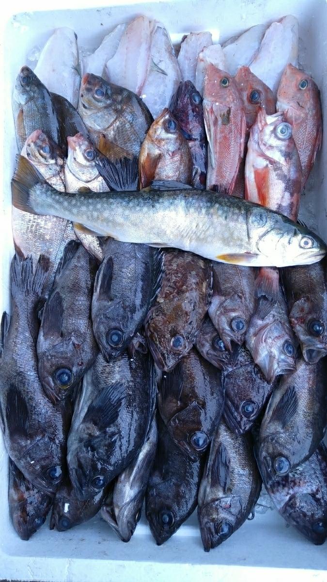 (貝)鮮魚混み魚1.0kg_画像1
