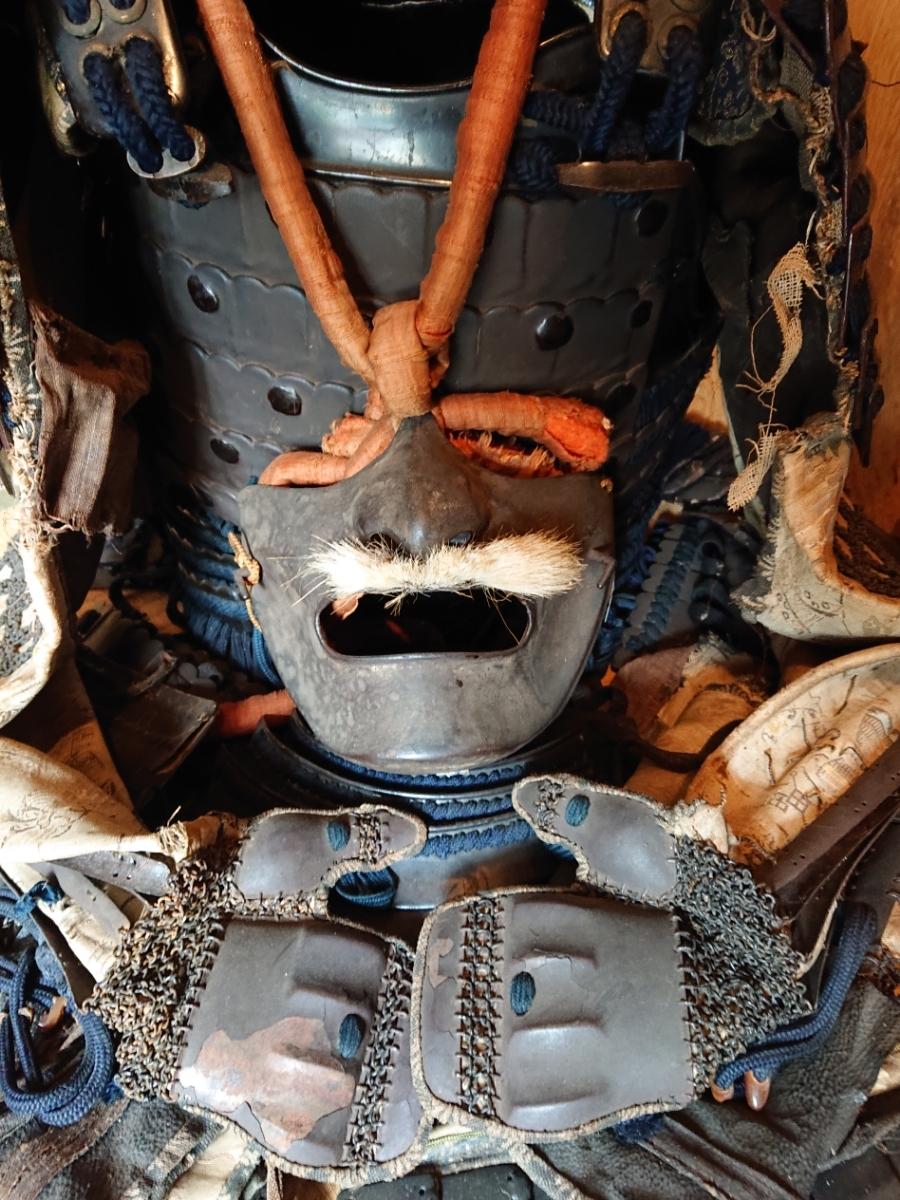 江戸時代 中期 保証 甲冑 鎧 当世具足 鎧兜 一式 鎧櫃 状態良好 _画像8