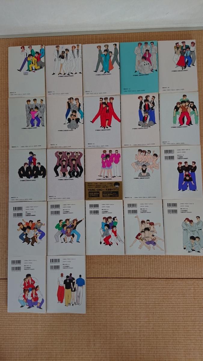 【漫画・全巻セット・美品】BAD BOYS ばっど・ぼーいず 田中宏 全22巻 ヤングキング コミックス 少年画報社