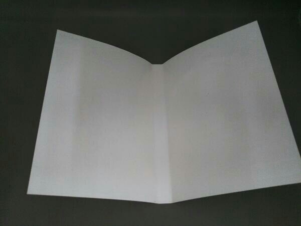 DVD 2004ウインタースペシャルミュージカル 美少女戦士セーラームーン 火球王妃降臨_画像5