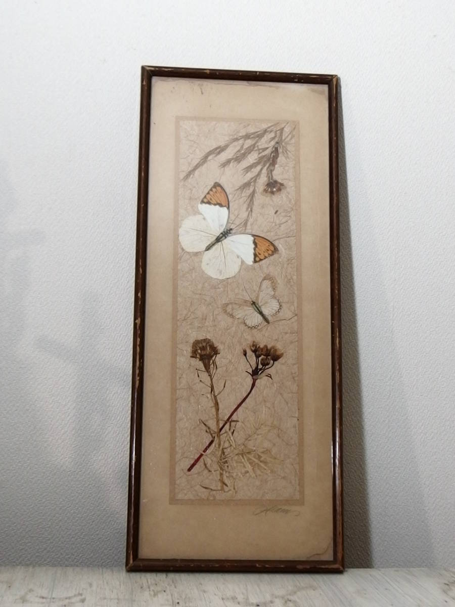 フランスアンティーク 壁飾り 額 フレーム コラージュアート 額縁 押し花 蝶 標本 絵画 コラージュアート_画像1