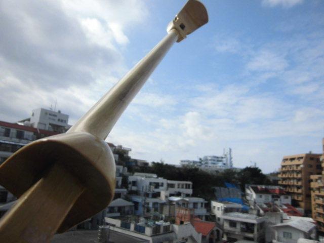 (送料無料)21.000円 沖縄三線専用 透明塗棹、蛇皮強化(二重張)型チーガ、カラクイセット_画像8