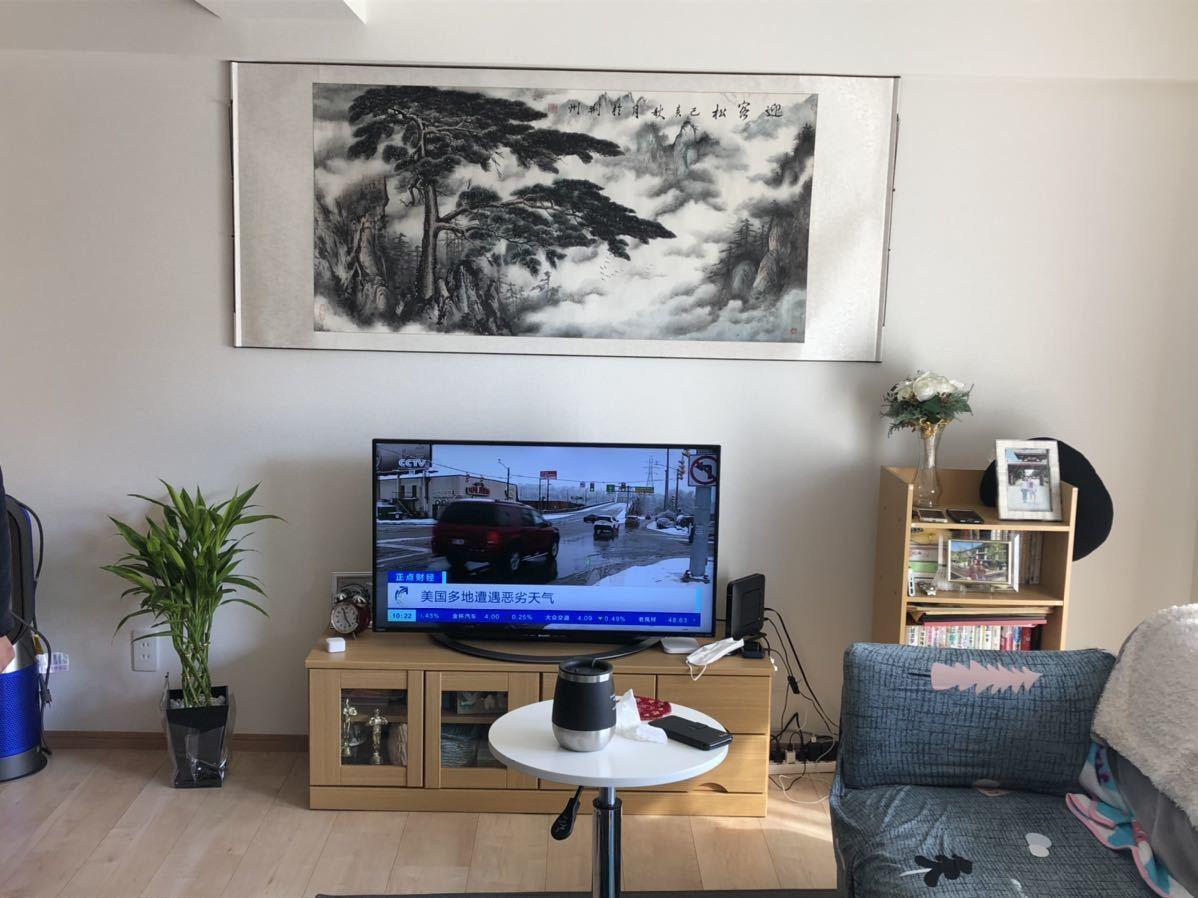 真作 中国画 掛軸 肉筆 古美術 掛け軸 中国美術 筆保 136cm×68cm_画像2