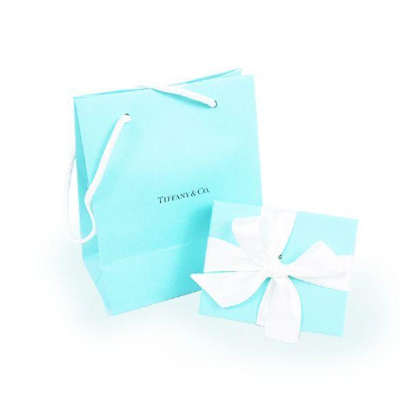 【新品】【未使用品】【1円~】【☆大感謝祭実施中☆】♪プレゼントにいかかがですか♪ティファニー ビーンネックレスBIG2