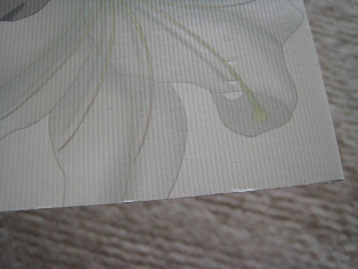 YOU激守(有那寿実)/ガンダムSEED同人誌5冊セット