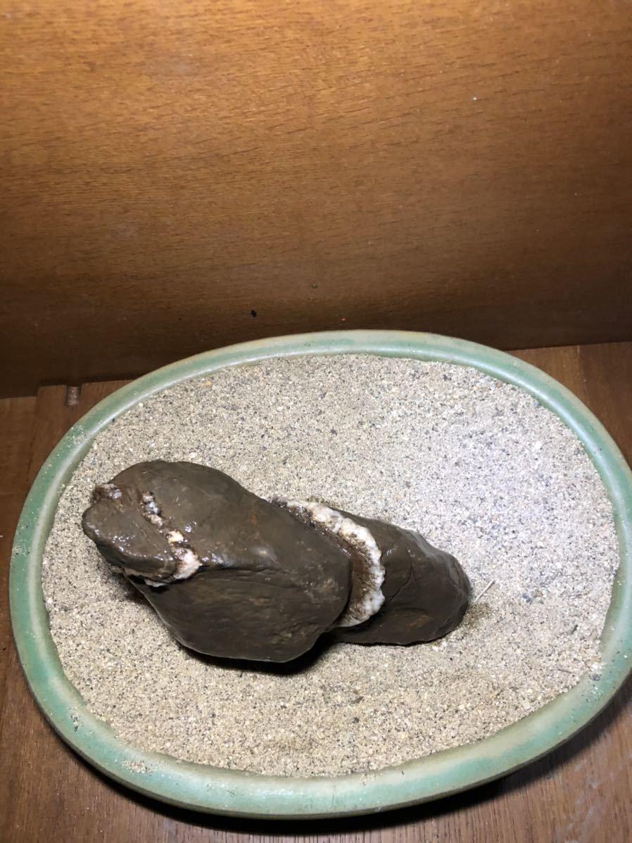 水石 鑑賞石 安倍川石_画像5