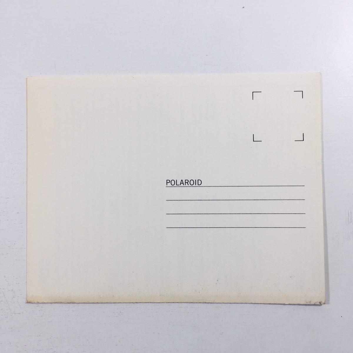 【 説明書 のみ 】 純正 オリジナル polaroid ポラロイド 660 英文 外国語 取扱 使用 レトロ フィルム カメラ レア 当時物 貴重_画像4