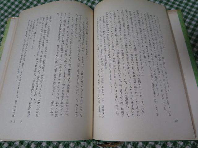愛子/佐藤愛子_画像4