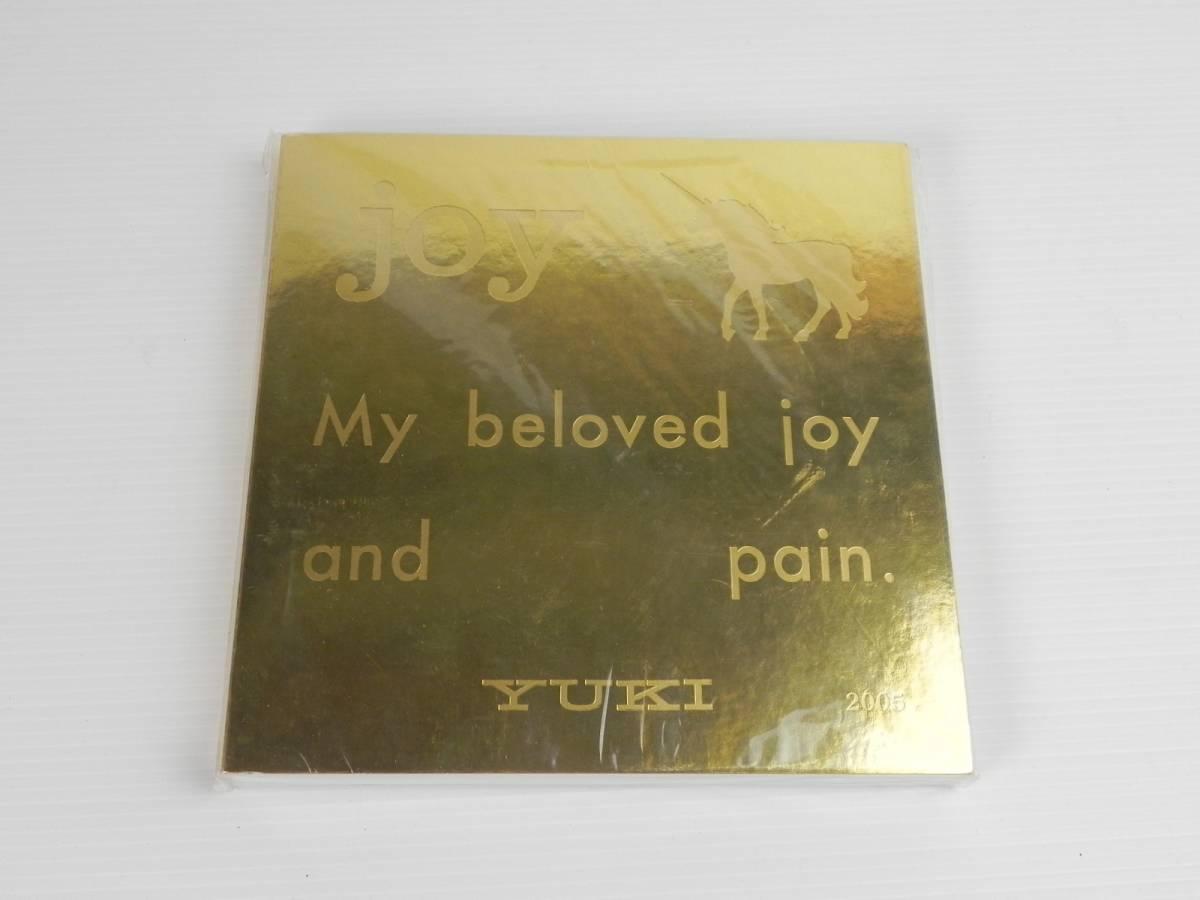 希少 ☆ YUKI joy TOUR 2005 My beloved joy and pain. パンフレット ☆ ジュディマリ レア 管3812