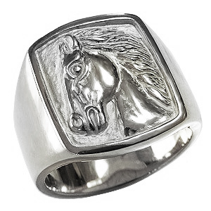 Bague pour homme Bague d'étanchéité pour tuyau de cheval Platine pour homme, accessoires et bagues pour homme et or