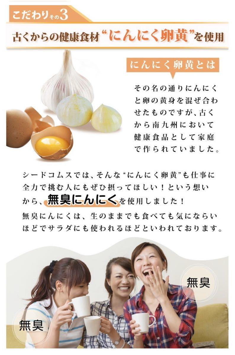 すっぽん黒酢+にんにく卵黄 約1ヵ月分 アミノ酸 無臭にんにく ジャポニカ種 美容 健康 ダイエット_画像4