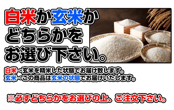 令和2年度 青森県産まっしぐら 白米10kg _画像7