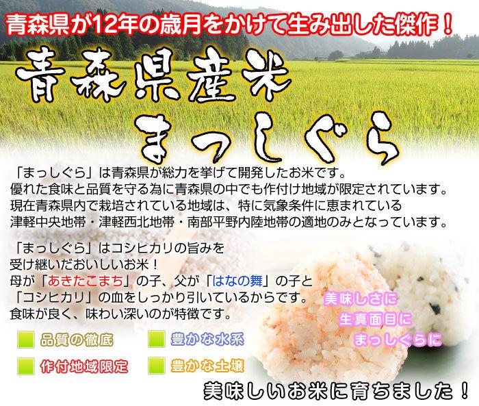 令和2年度 青森県産まっしぐら 白米10kg _画像4